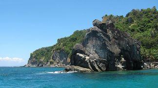 Marine Sanctuary Apo Island, Philippines